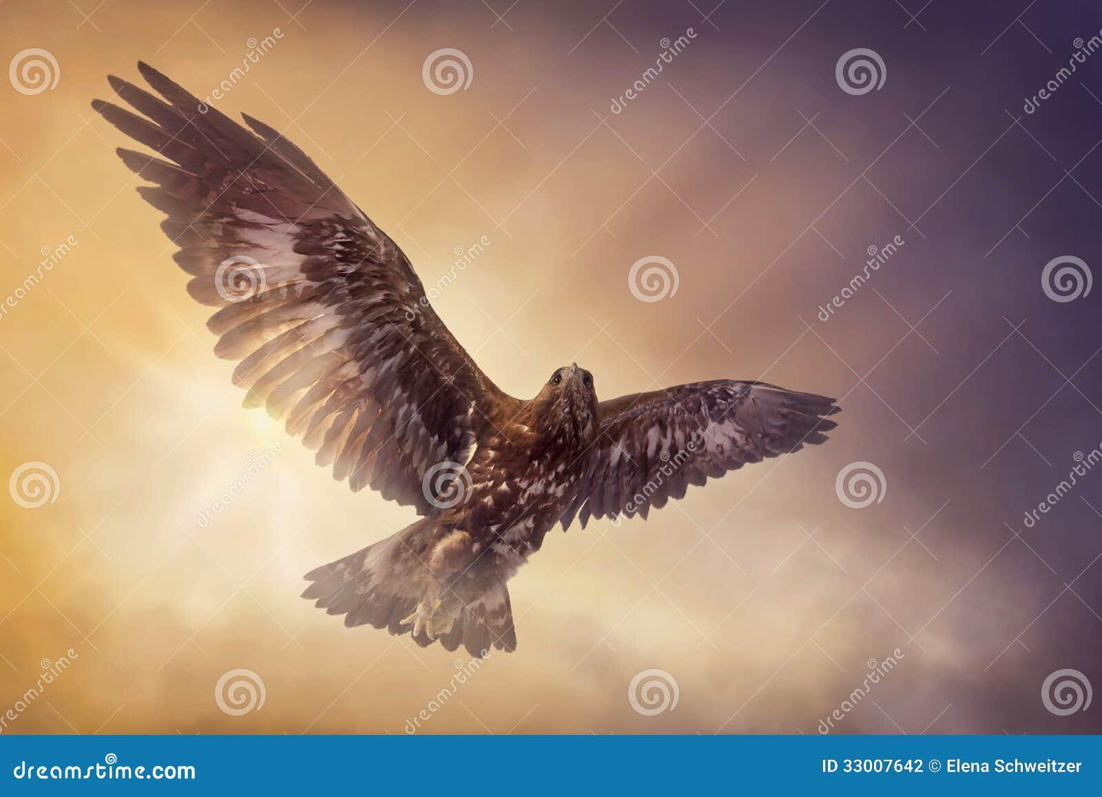 Voler d Eagle