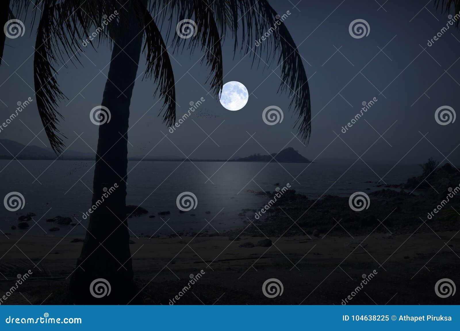 Download Volle Maannacht Over Het Overzees En Het Strand Stock Afbeelding - Afbeelding bestaande uit baan, maan: 104638225
