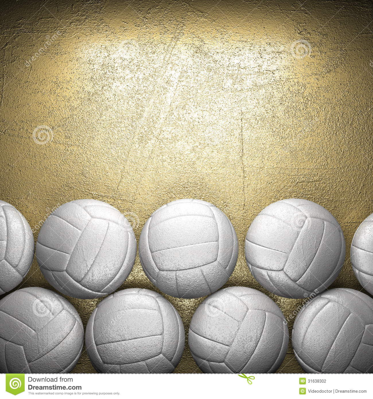 Volleyball Ball...