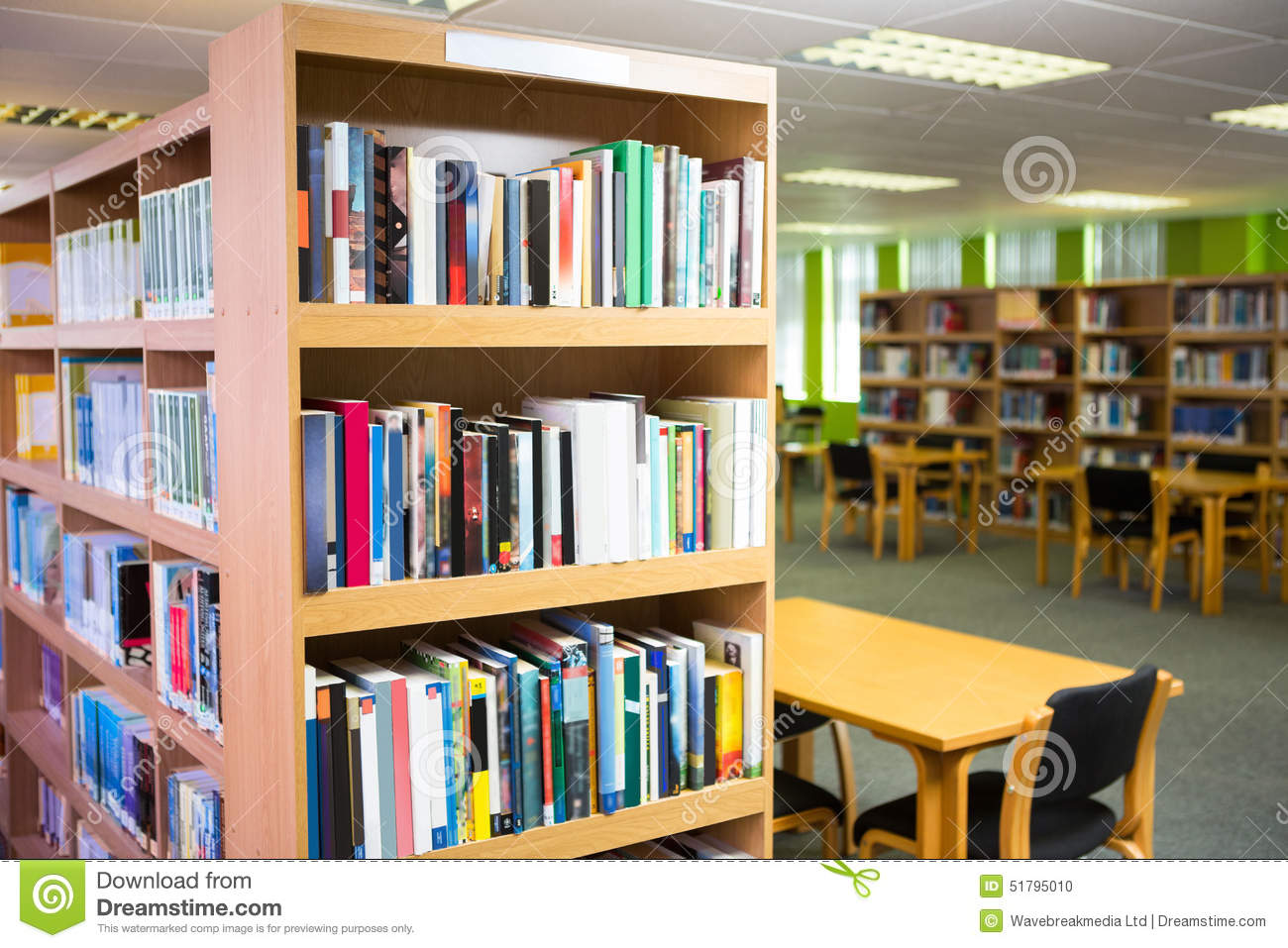 Volumes Of Books On Bookshelf In Library Download Preview
