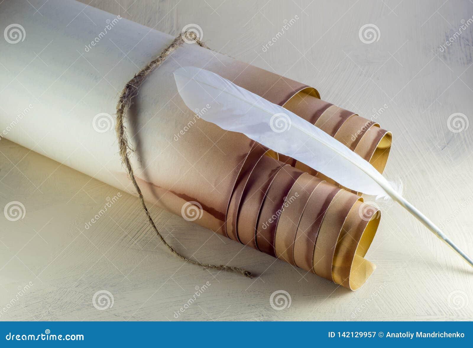 Voluta de papel vieja, atada con una cuerda, y una pluma de canilla blanca