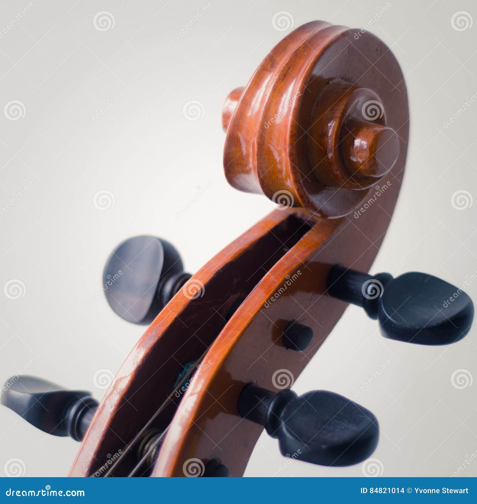 Voluta del violoncelo y clavijas de adaptación