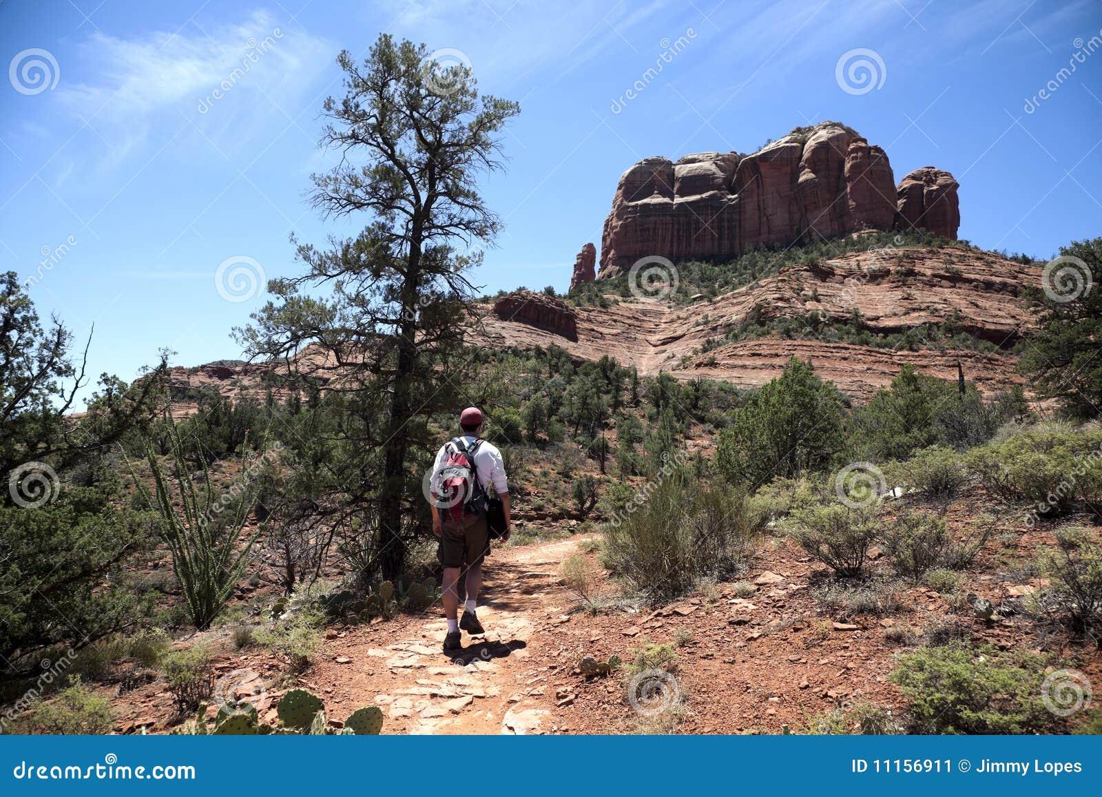 Volwassen Mannelijke Wandeling in de Woestijn
