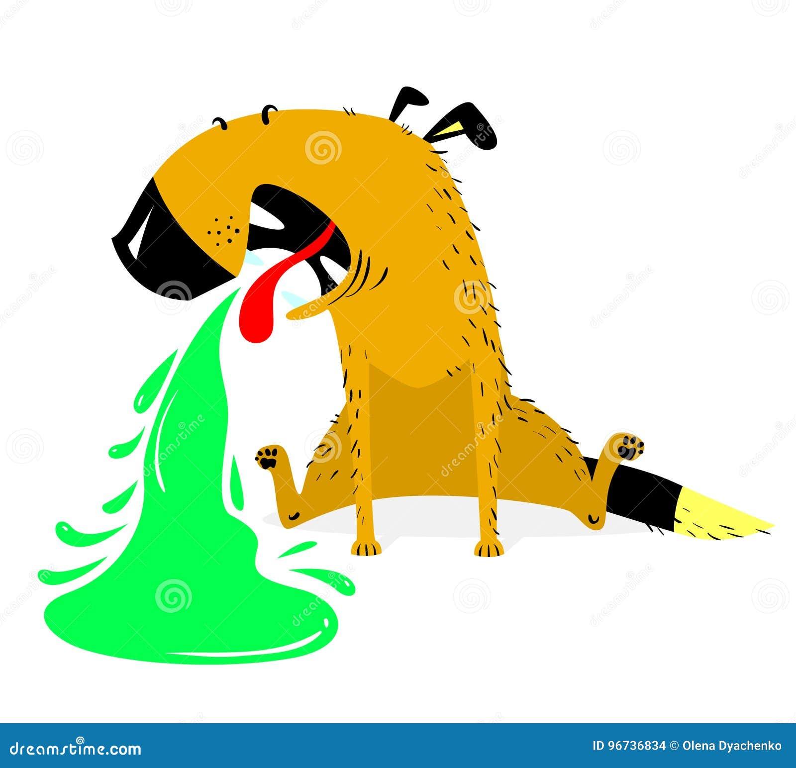 Vomiting dog.Sick dog. Pet pukes with green vomit.