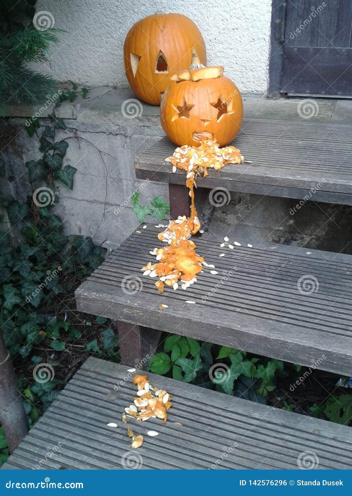 vomiting pumpkin