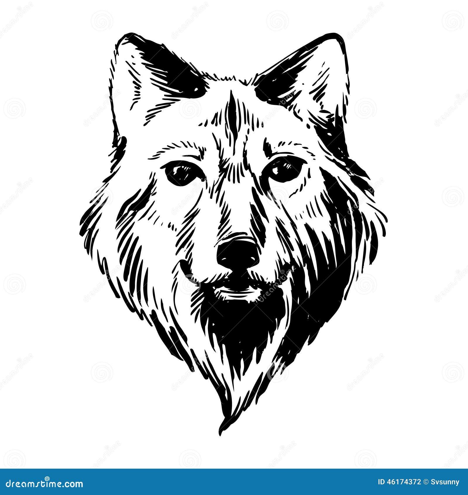 Von Hand Gezeichnete Tiere Der Markierung Wald: Wolf Stock