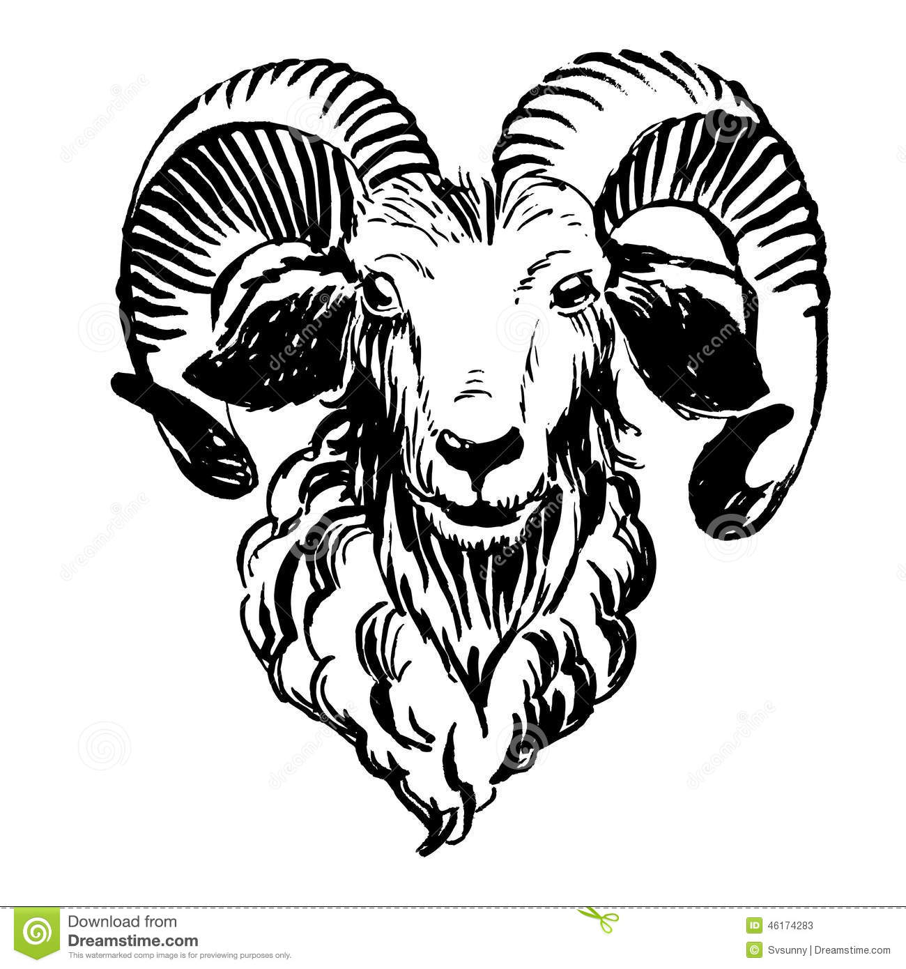 rocky mountain bighorn sheep coloring page