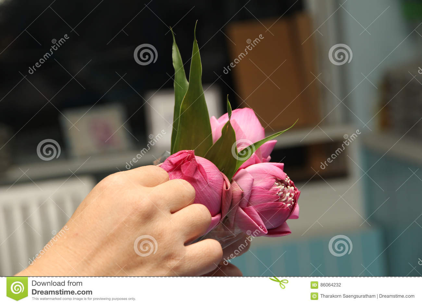 Voorbereiding van lotusbloem voor monniken door schoonheidslotusbloem