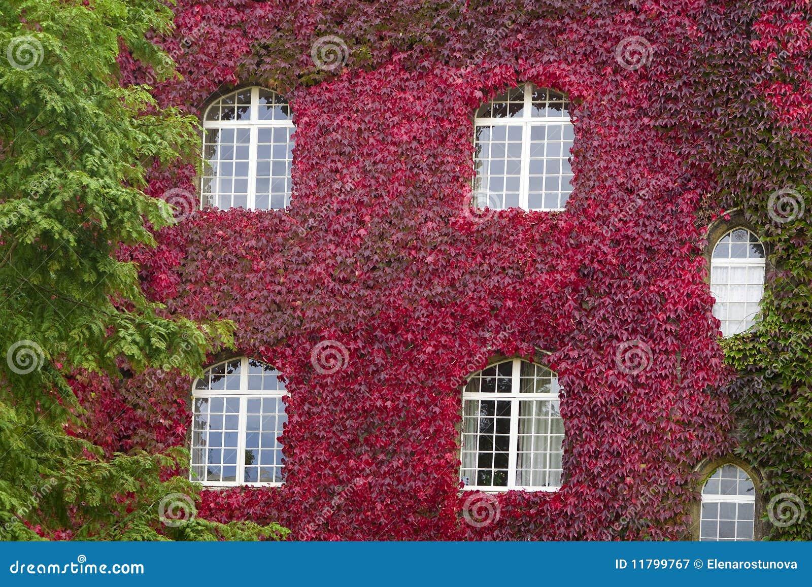 Voorzijde van oud huis stock afbeelding afbeelding bestaande uit geschiedenis 11799767 - Oud huis ...