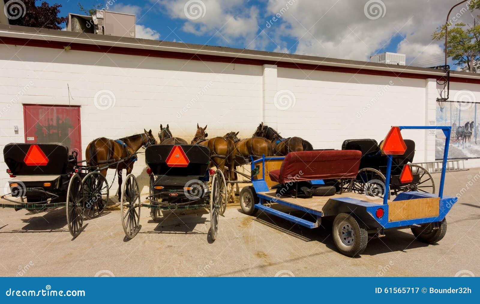 Vorgespannte Pferde benutzt, um amische Lastwagen zu ziehen