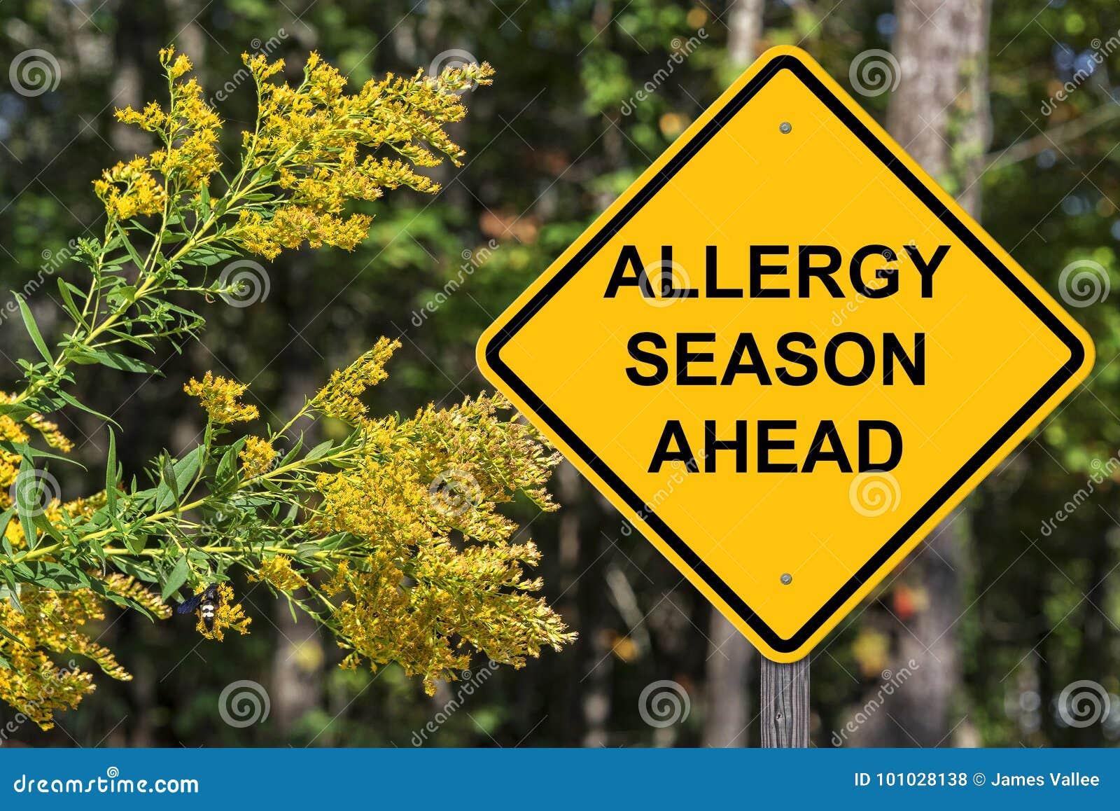 Vorsicht - Allergiezeit voran