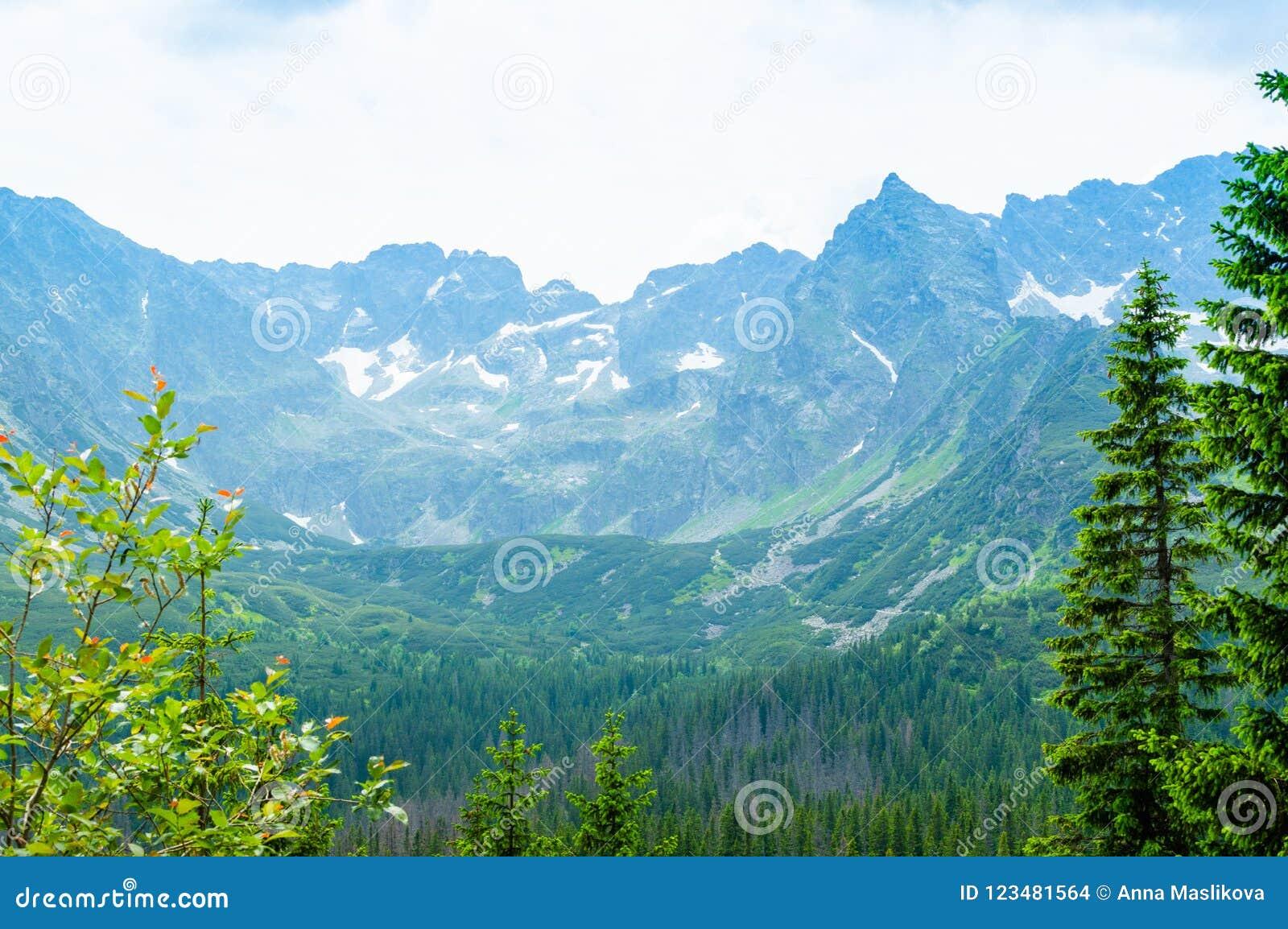 Voyage en Europe Endroit pour la hausse Montagnes et collines dans Tatra