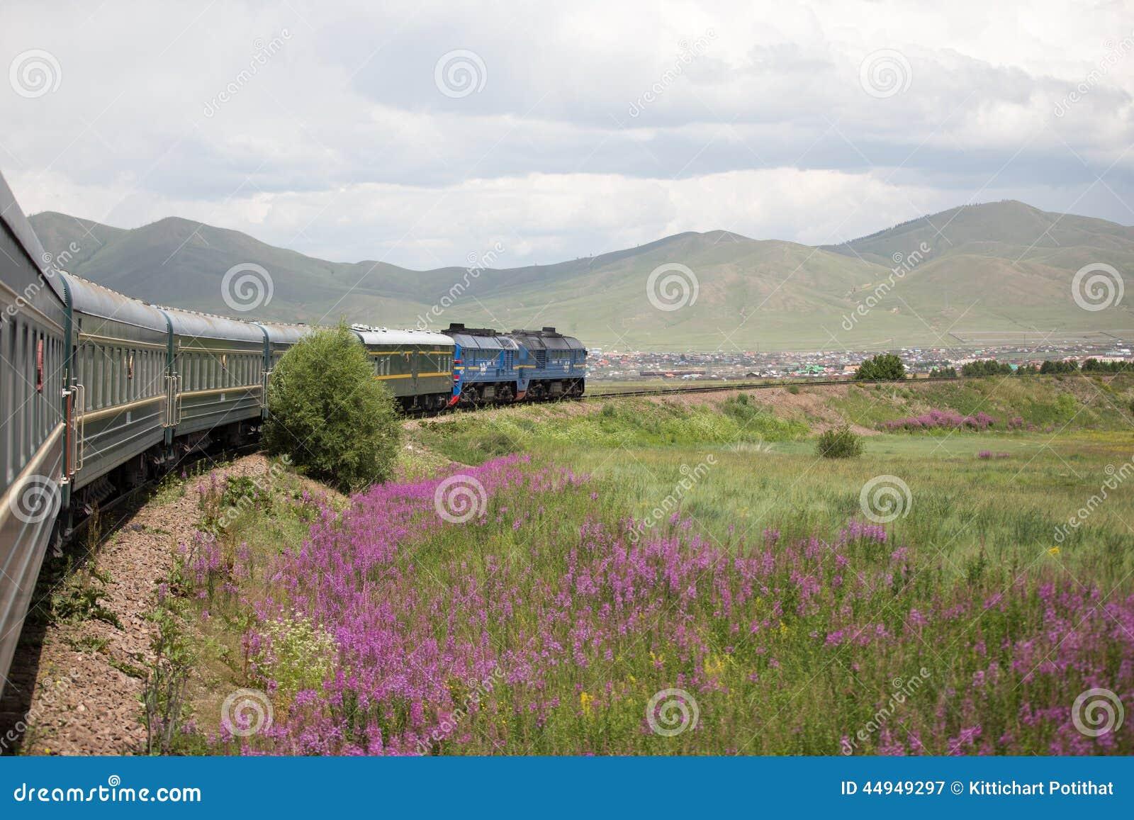 Voyage exotique de train mongol de transport, Mongolie