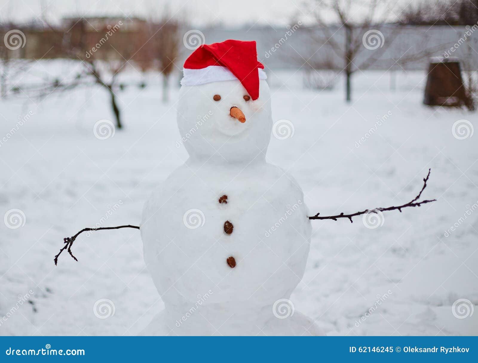 Vrai bonhomme de neige dehors stock images 10 photos - Vrai flocon de neige ...