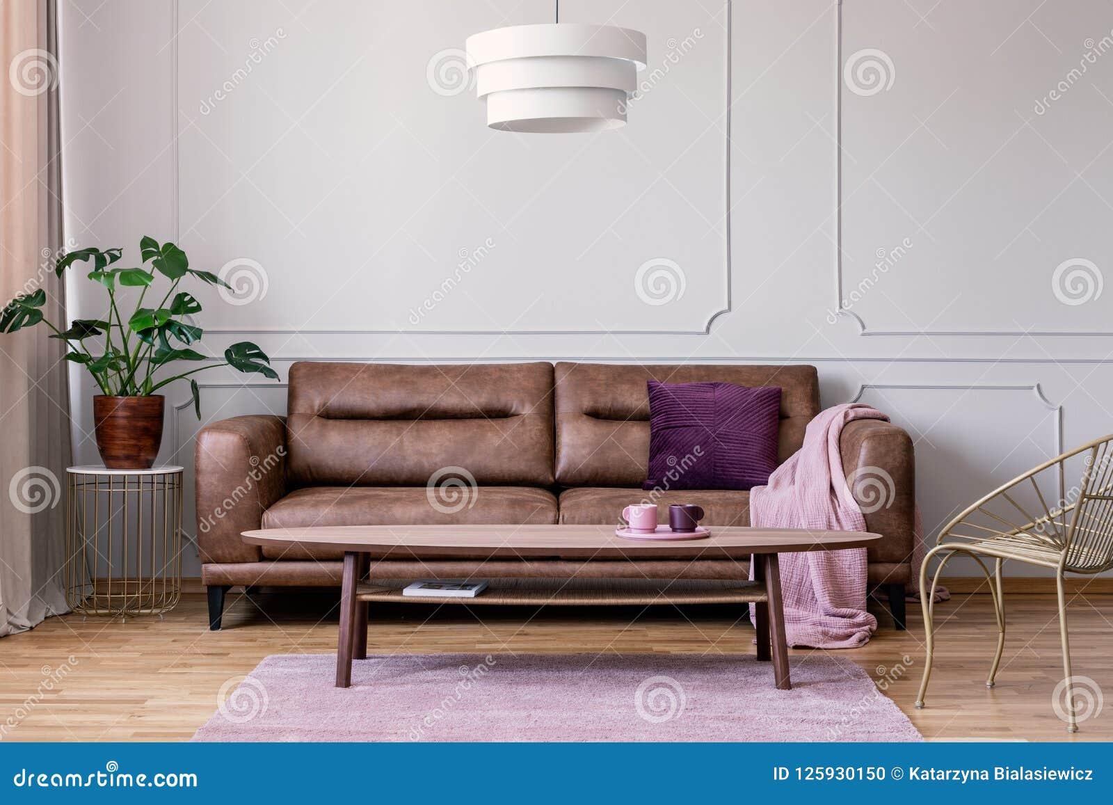 Vraie photo de sofa en cuir brun avec la position couvrante de coussin violet et de rose en pastel dans l intérieur gris-clair de
