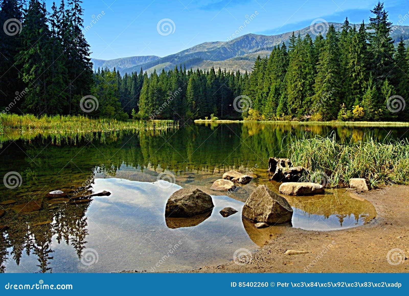 Vrbicke-Gebirgssee niedriges Tatras Slowakei