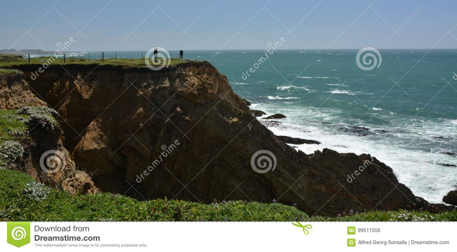 Vreedzame kustenindrukken van het Licht van de Puntarena, Californië de V.S.