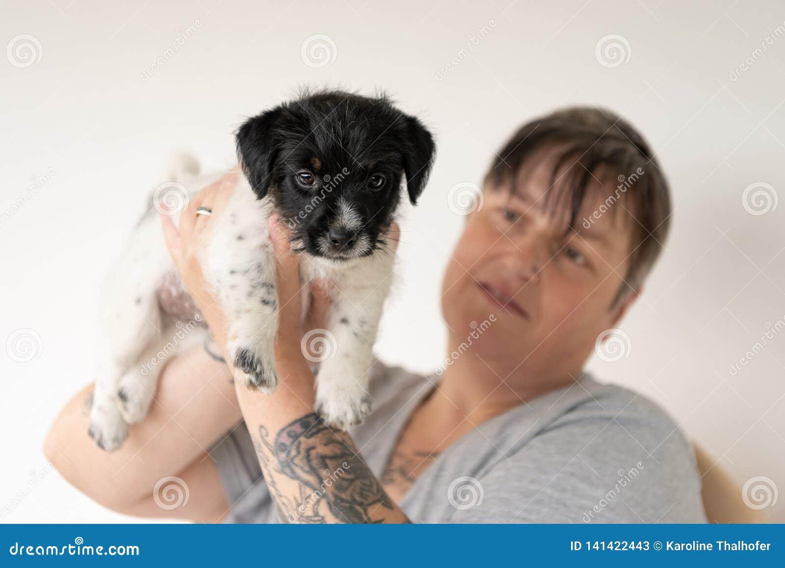 Vriendschap tussen eigenaar en zijn het puppyhond van babyjack russell terrier De manager draagt het jong 7 5 weken Oud