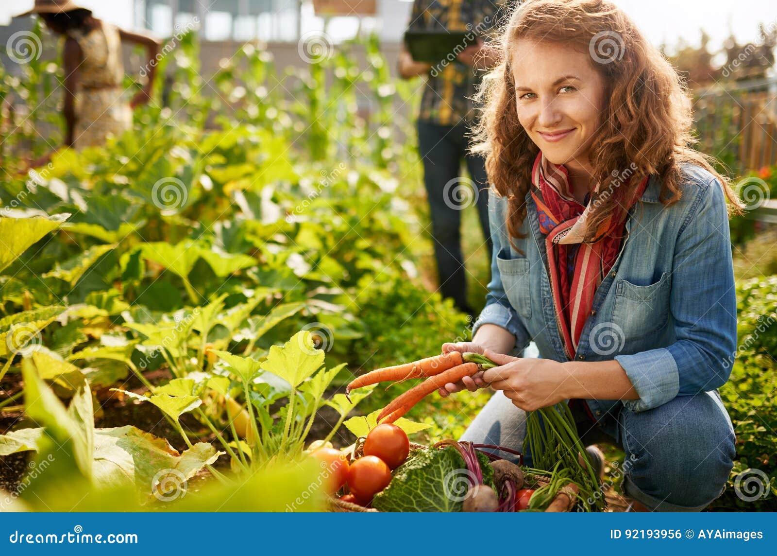 Vriendschappelijk team die verse groenten van de tuin van de dakserre oogsten en oogstseizoen op digitaal plannen