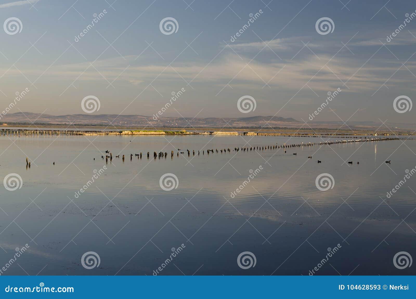 Download Vroeg In De Ochtend Op Het Strand In Pomorie Stock Afbeelding - Afbeelding bestaande uit leisure, groen: 104628593