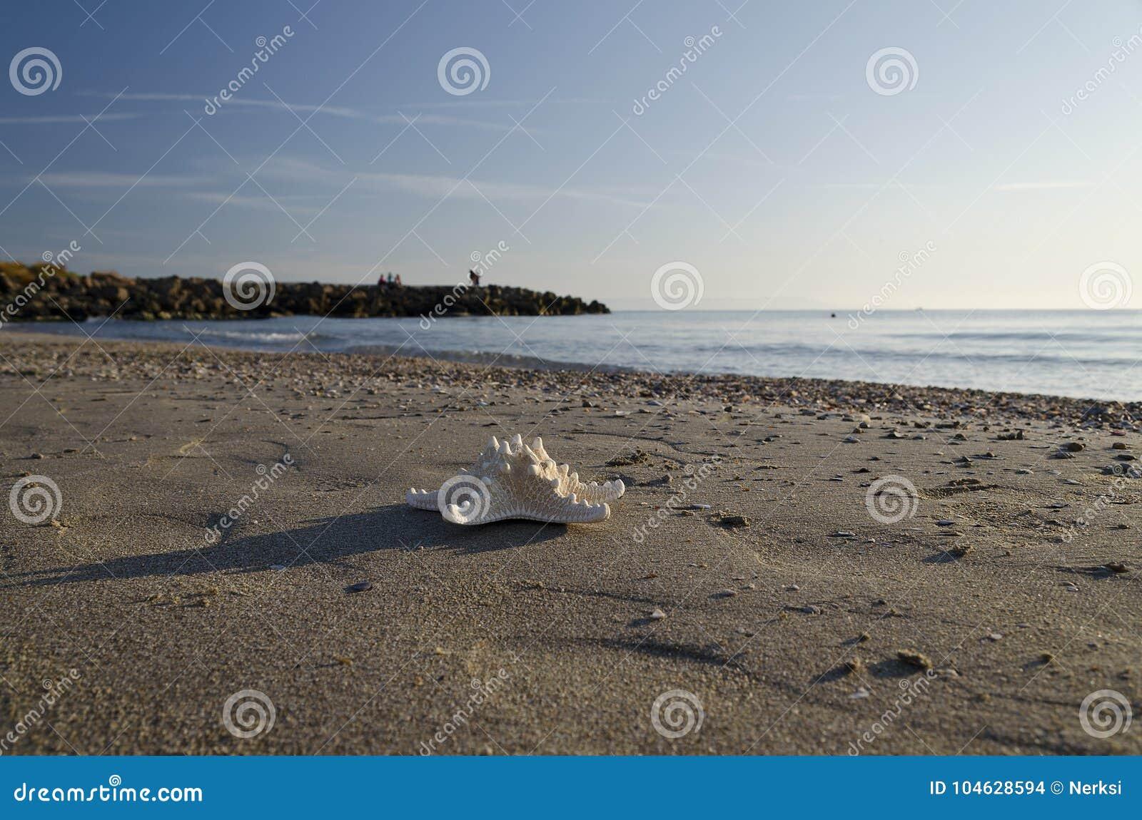 Download Vroeg In De Ochtend Op Het Strand In Pomorie Stock Foto - Afbeelding bestaande uit schemer, openlucht: 104628594