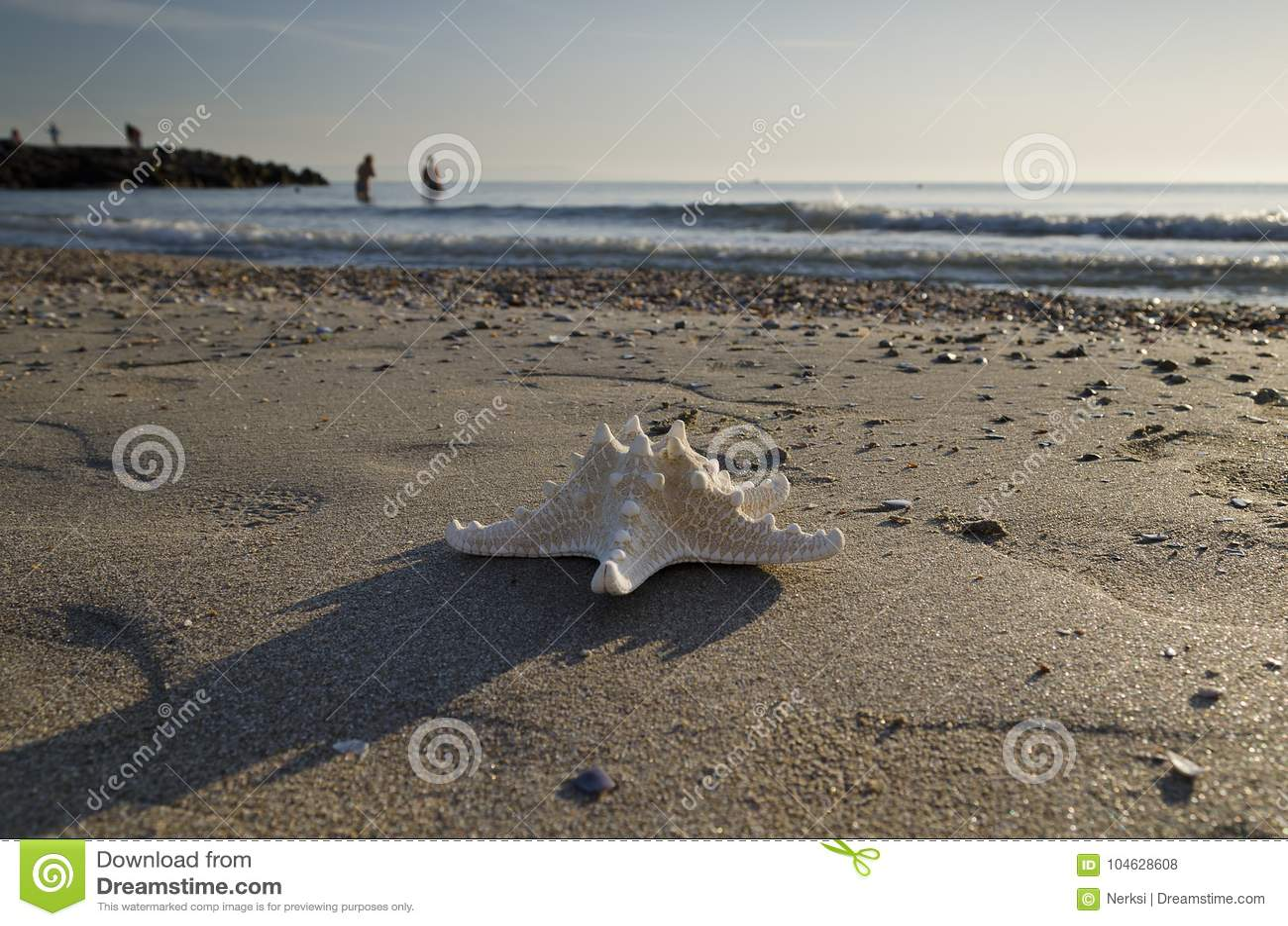 Download Vroeg In De Ochtend Op Het Strand In Pomorie Stock Foto - Afbeelding bestaande uit dageraad, klimaat: 104628608