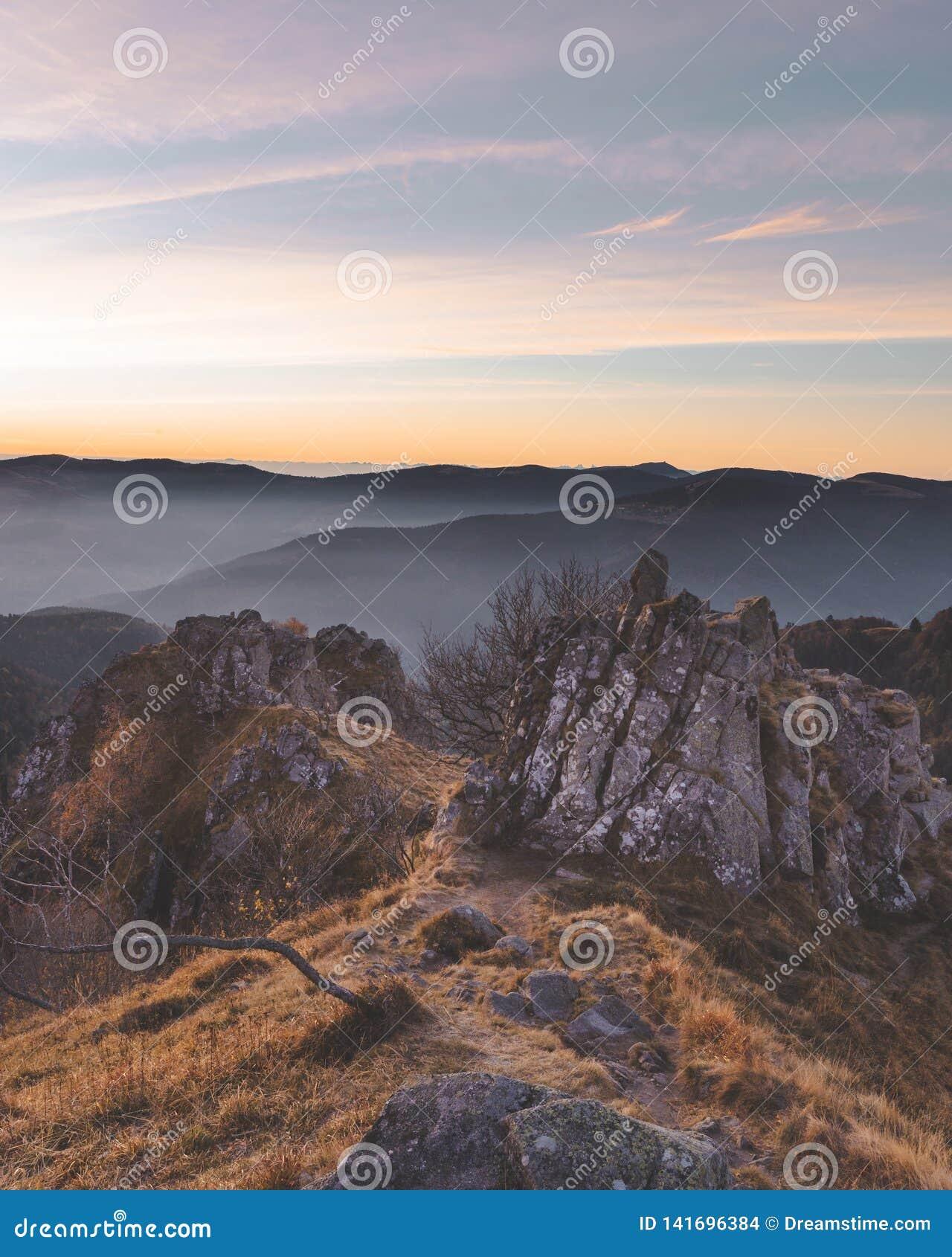 Vroege ochtendmening van de Vogezen-bergen in Frankrijk mooi gouden licht op bos en rotsen