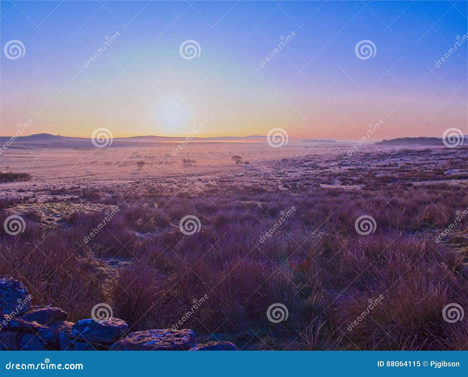 Vroege ochtendvorst Dartmoor