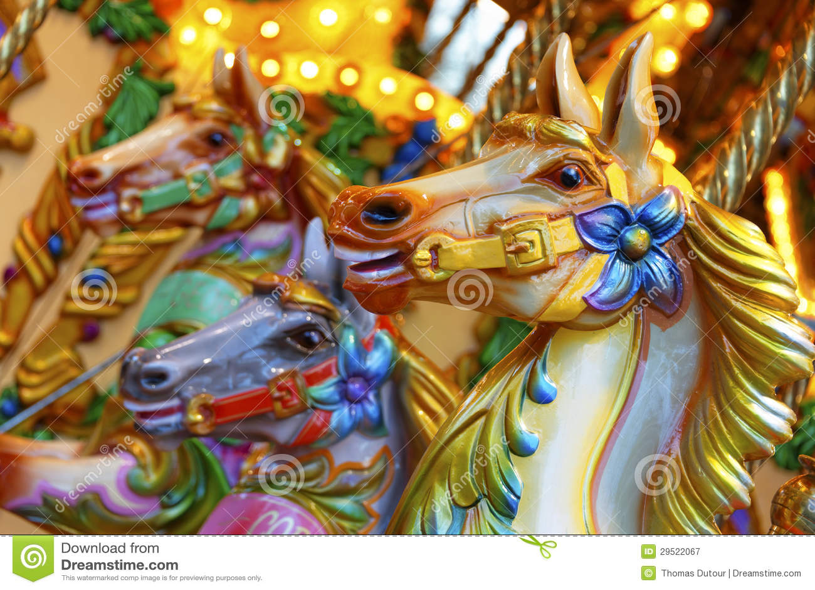 Vrolijk-gaan-rond paarden