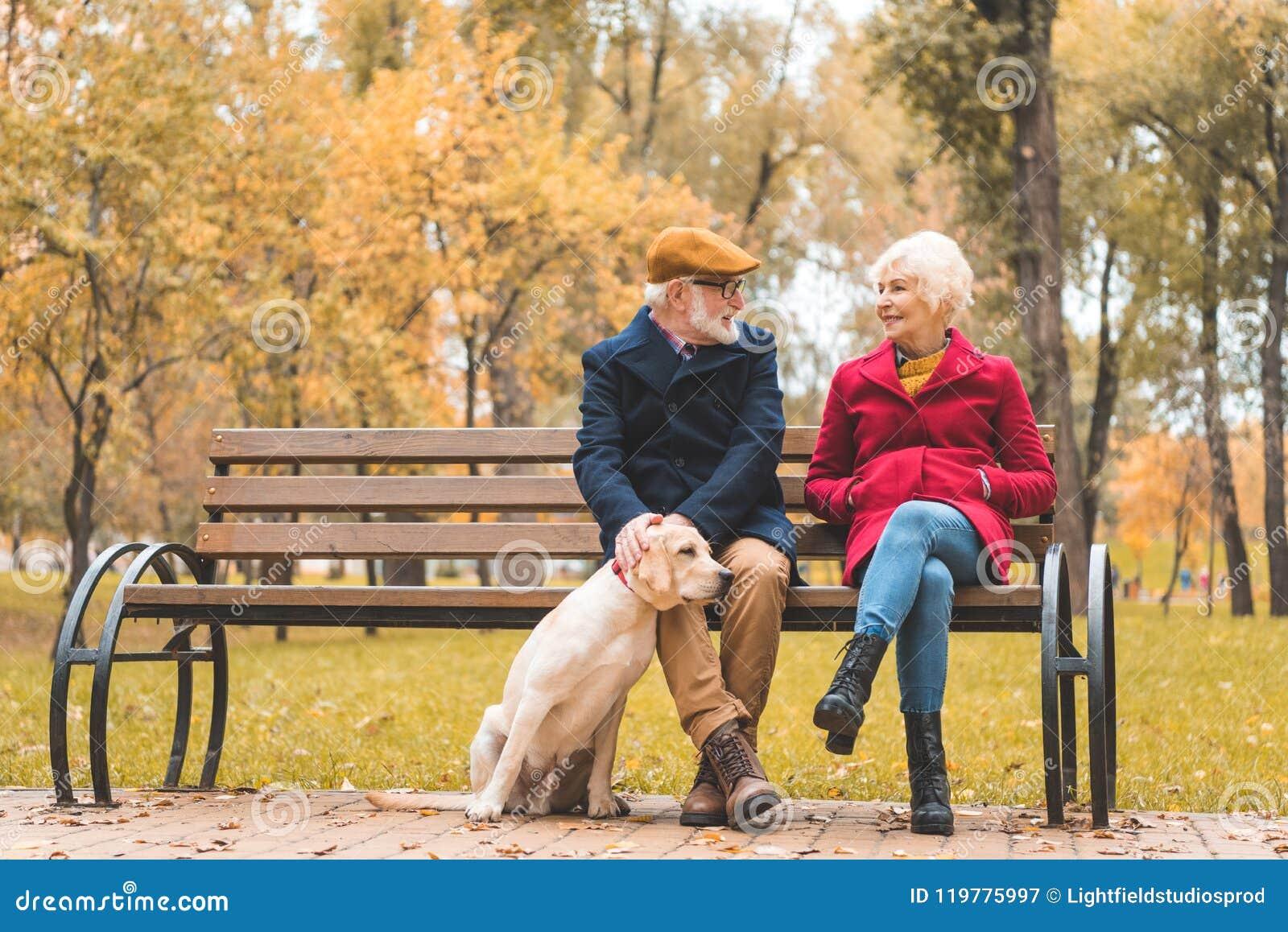 Vrolijk hoger paar met labrador retriever-hondzitting op bank in de herfst