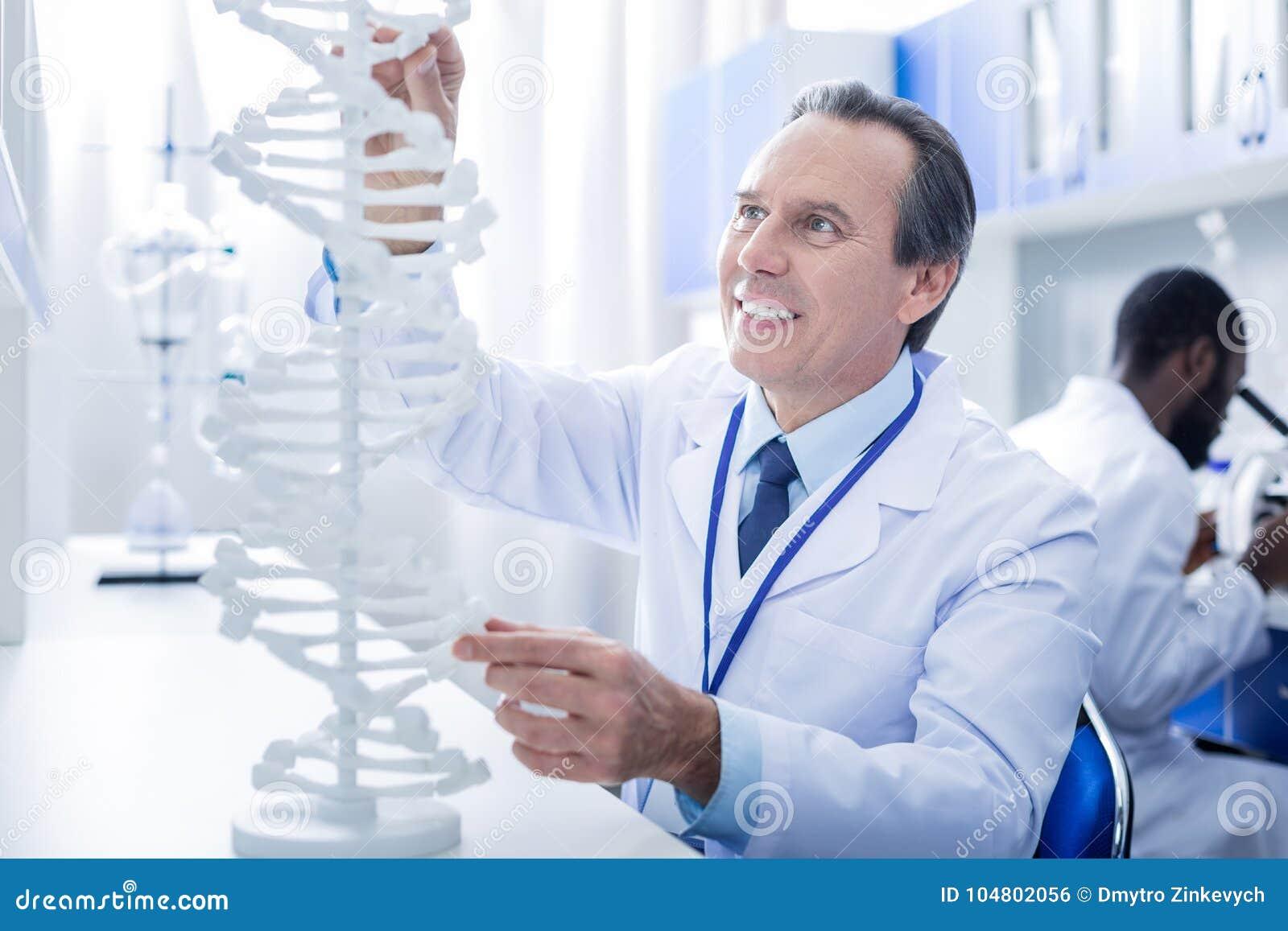 Vrolijke mannelijke geneticus die het DNA-model bekijken