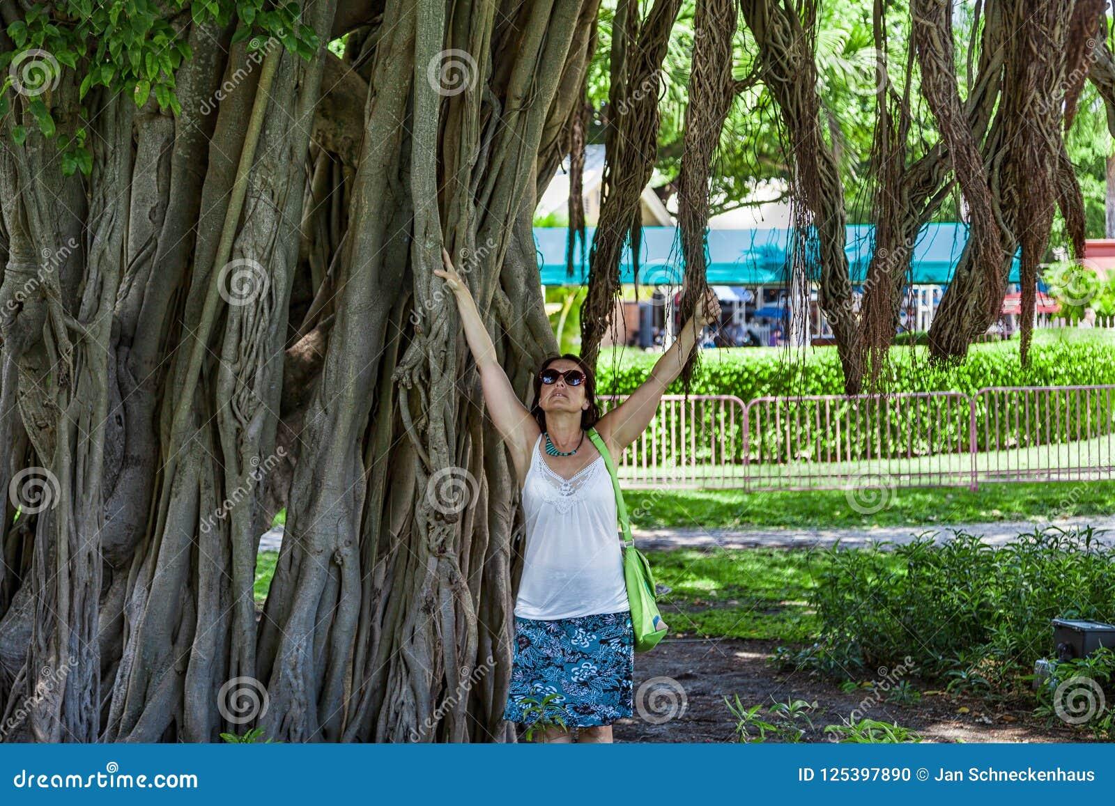 Vrouw bij een reuzeboom in Miami van de binnenstad