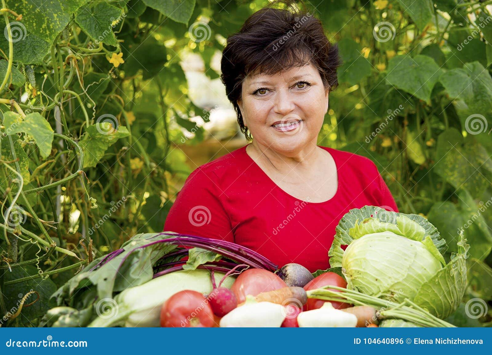 Download Vrouw Die In Een Serre Werken Stock Foto - Afbeelding bestaande uit voedsel, werknemer: 104640896