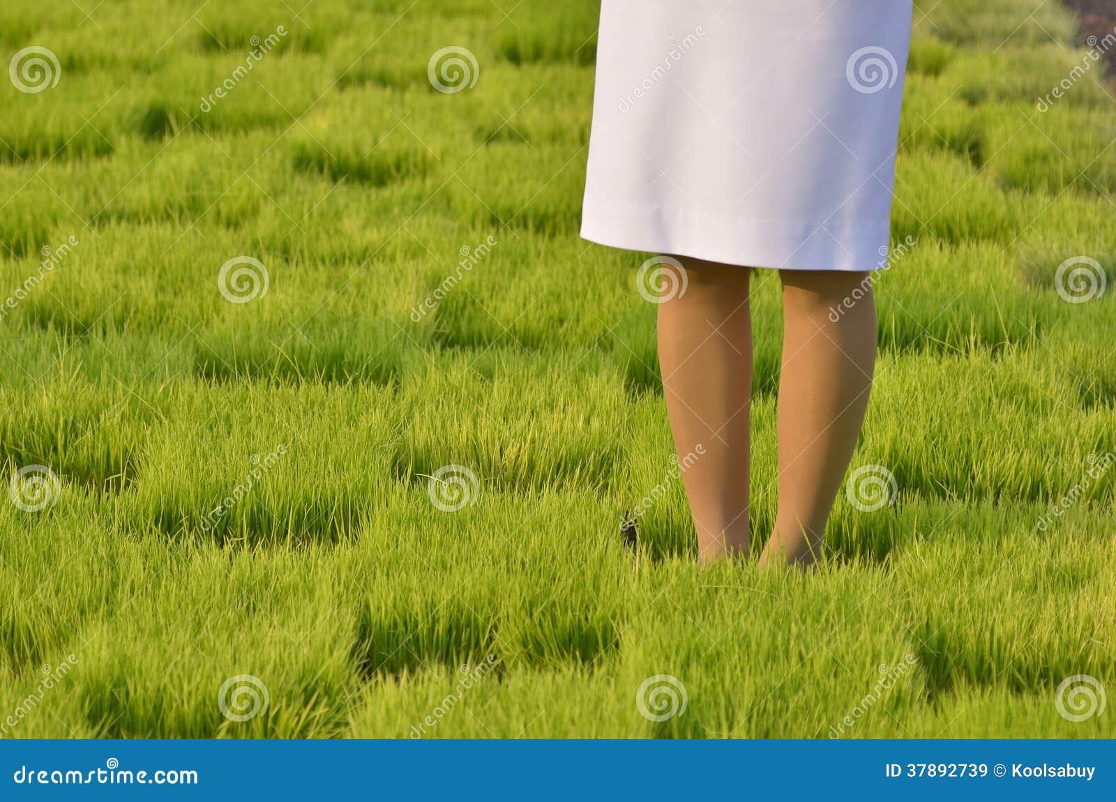 Vrouw die zich in gras bevinden