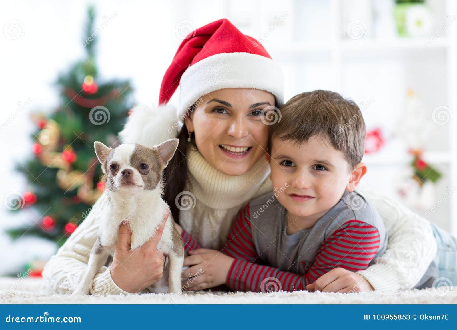Vrouw en haar zoon het vieren Kerstmis met bontvriend Moeder en jong geitje met terriërhond Mooie kindjongen met puppy bij Kerstm