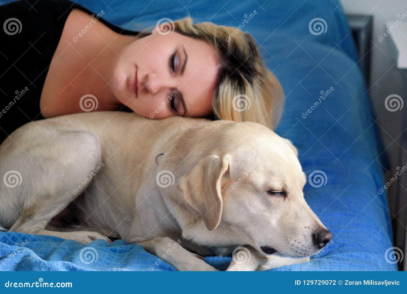 Vrouw met leuke honden thuis Knap meisje die en met haar hond in bed in slaapkamer rusten slapen Eigenaar en hondslaap in bank