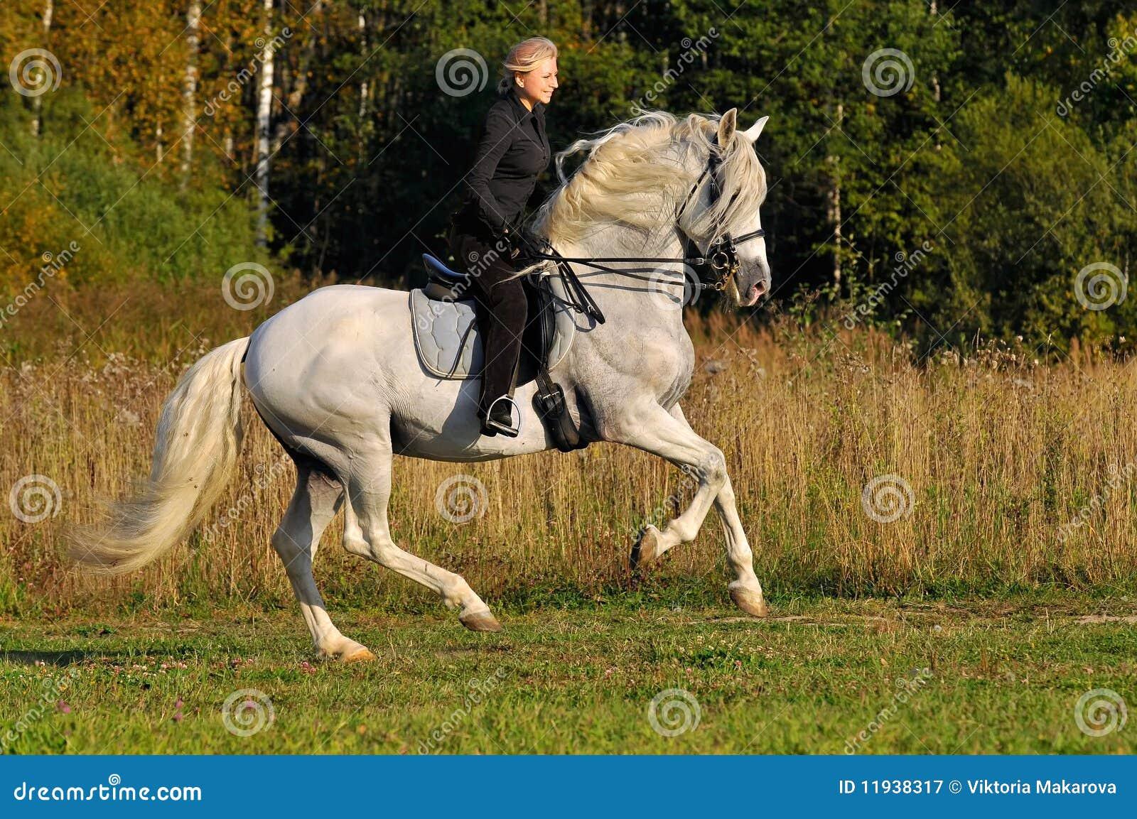 Vrouw op wit paard