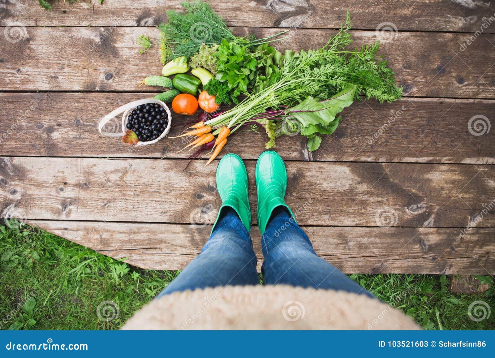 Vrouw in rubberlaarzen in de tuin met groenten stock for Groenten tuin