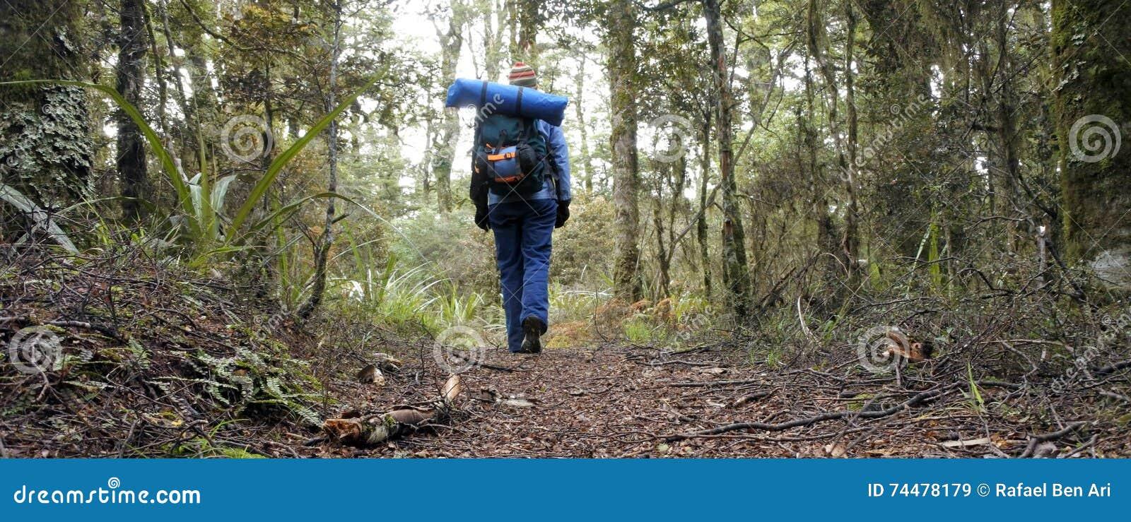 Vrouwenwandelaar die in regenwoud wandelen