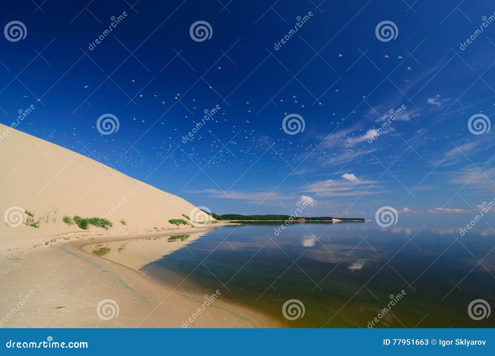 Vue à la broche curonian de la baie, Russie, Zelenogradsk