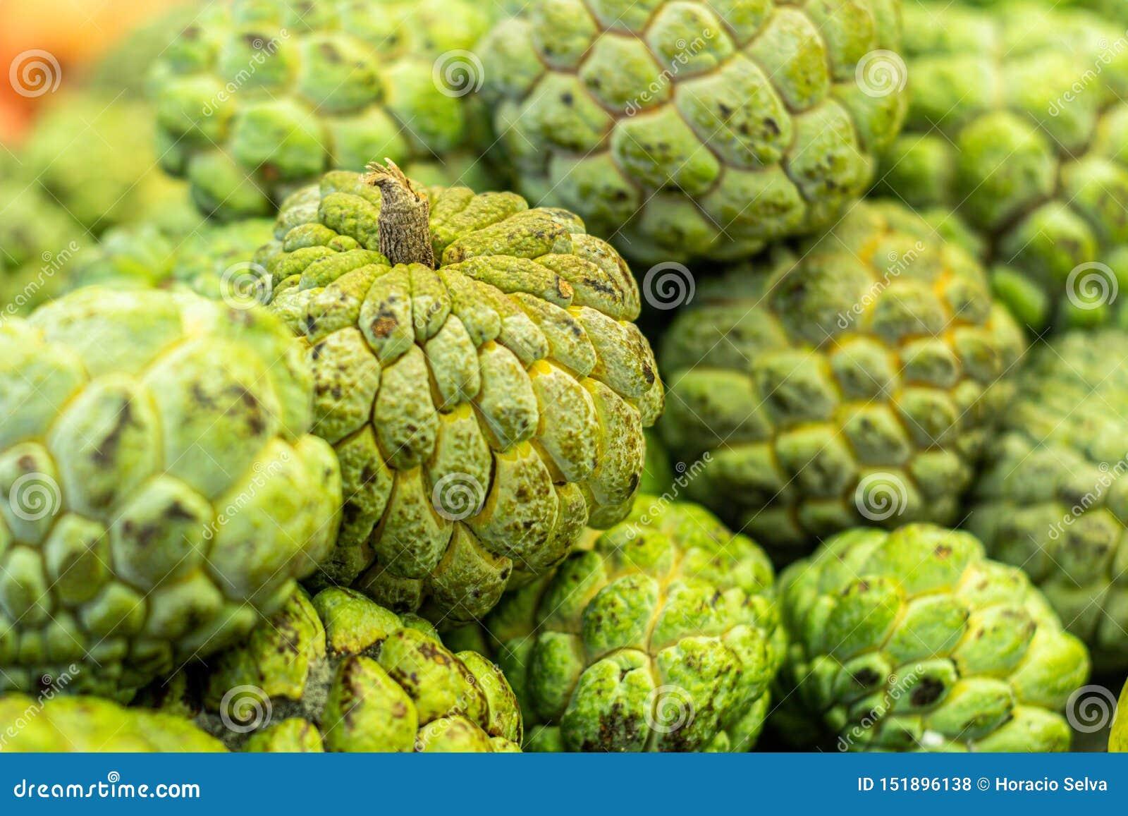 Vue étroite des plusieurs fruit de Pinhia Fruit frais du nord-est du Brésil vert sur l extérieur et blanc sur l intérieur