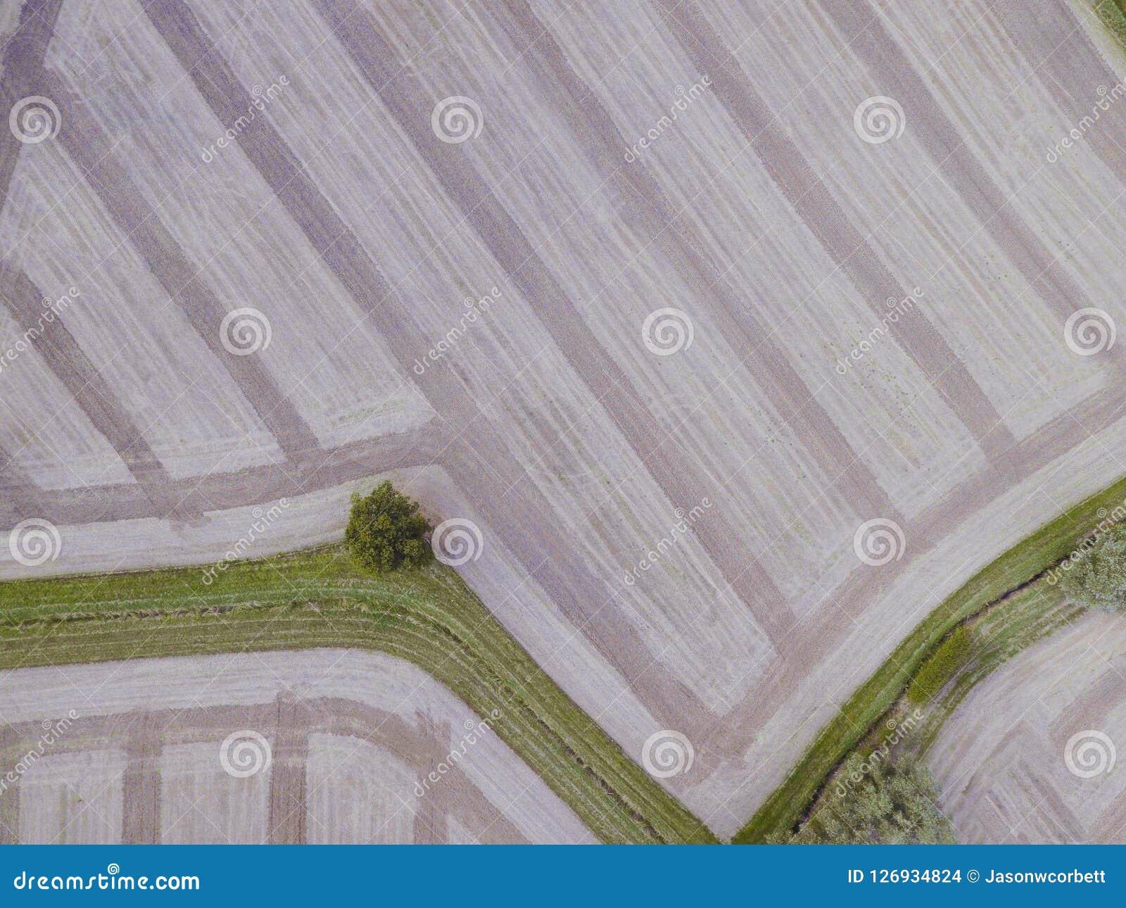 Vue aérienne de bourdon de ferme moissonnée près de colline de boîte Rayé, avec l herbe et les arbres