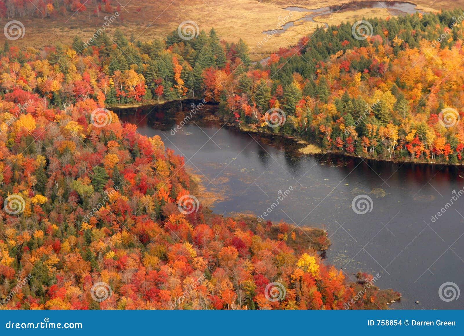 Vue aérienne des couleurs changeantes d automne de la Nouvelle Angleterre