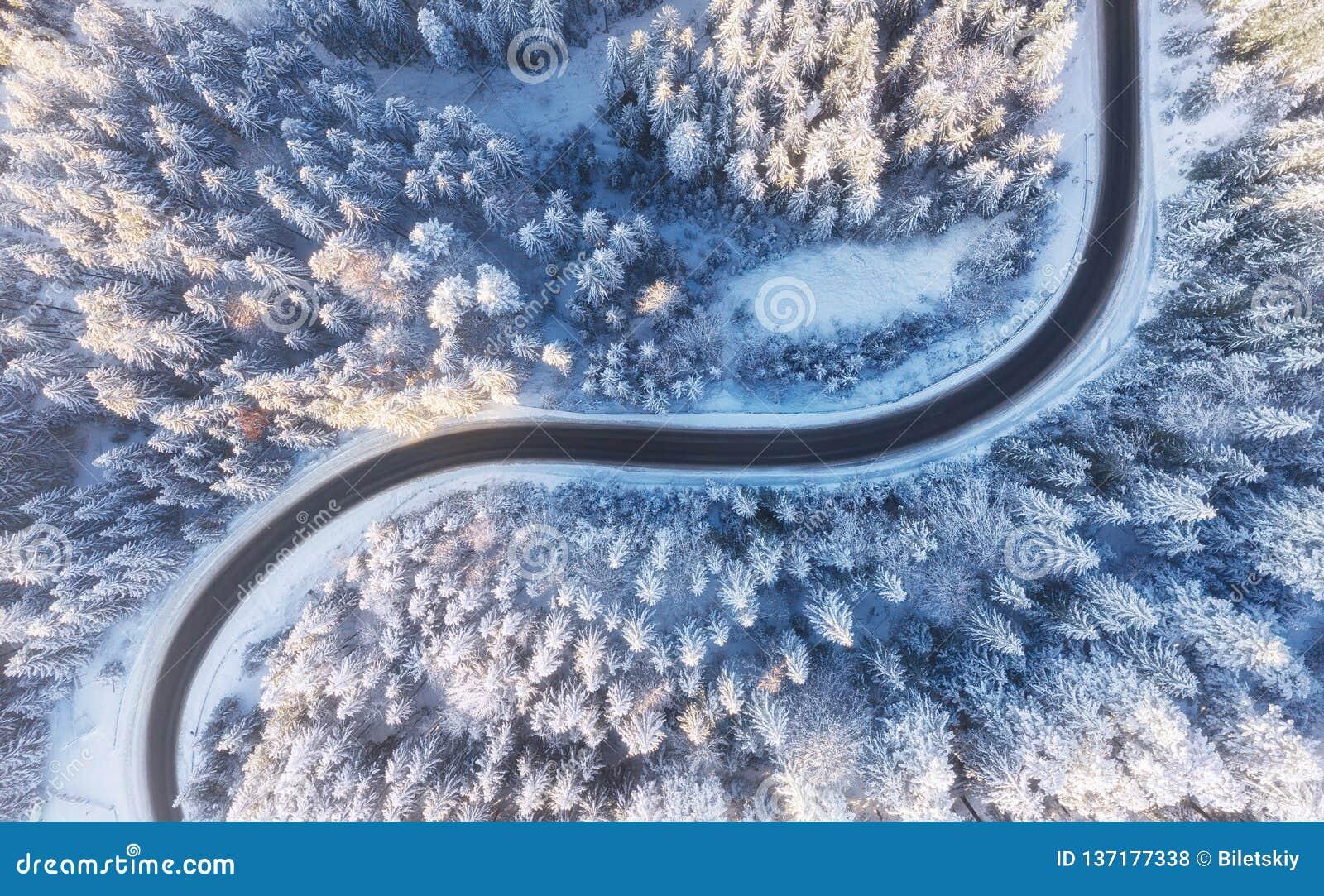 Vue aérienne sur la route et la forêt à l horaire d hiver Paysage naturel d hiver d air Forêt sous la neige a l horaire d hiver
