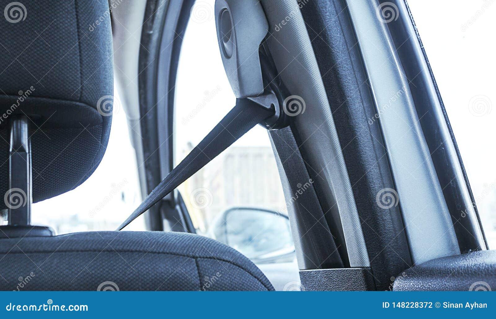 Vue arrière de ceinture de sécurité de port