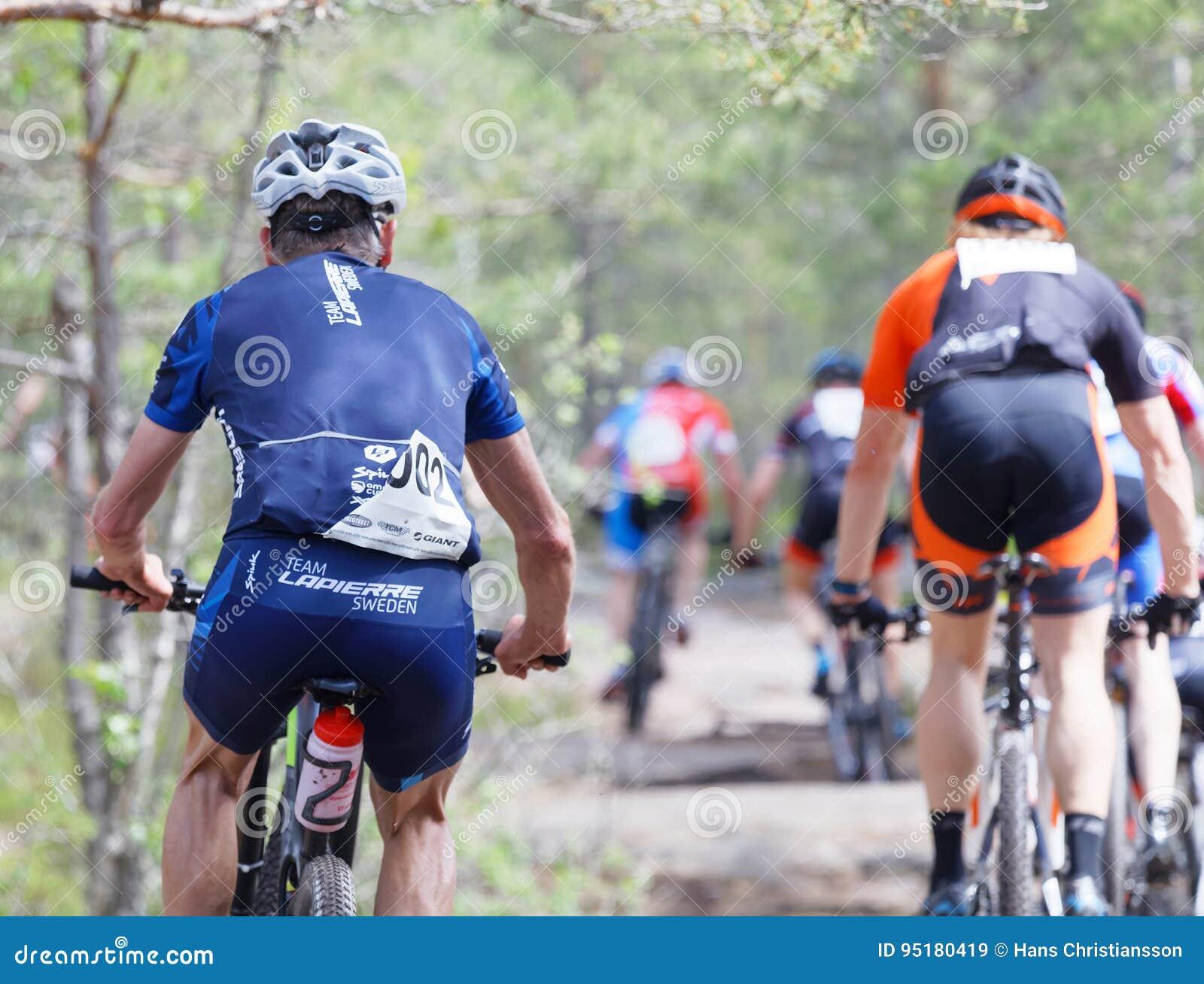 Vue arrière de groupe de cyclistes de vélo de montagne dans la forêt