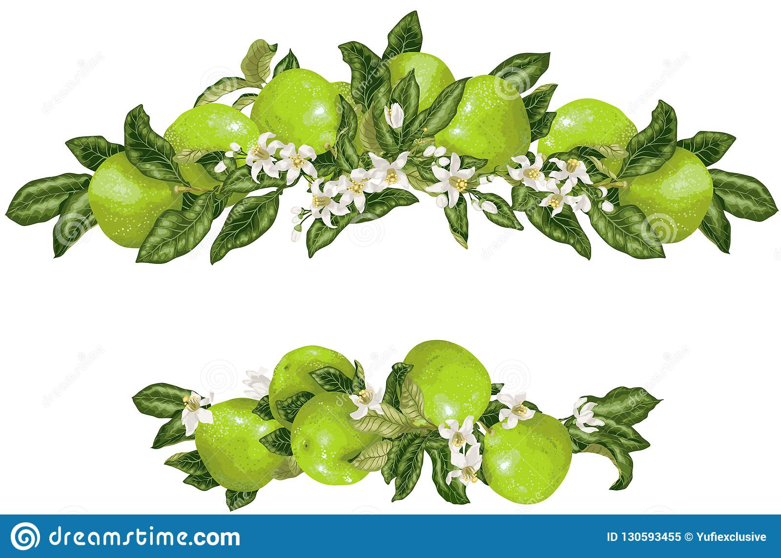 Vue avec le fruit et les fleurs de pamplemousse dans le vecteur