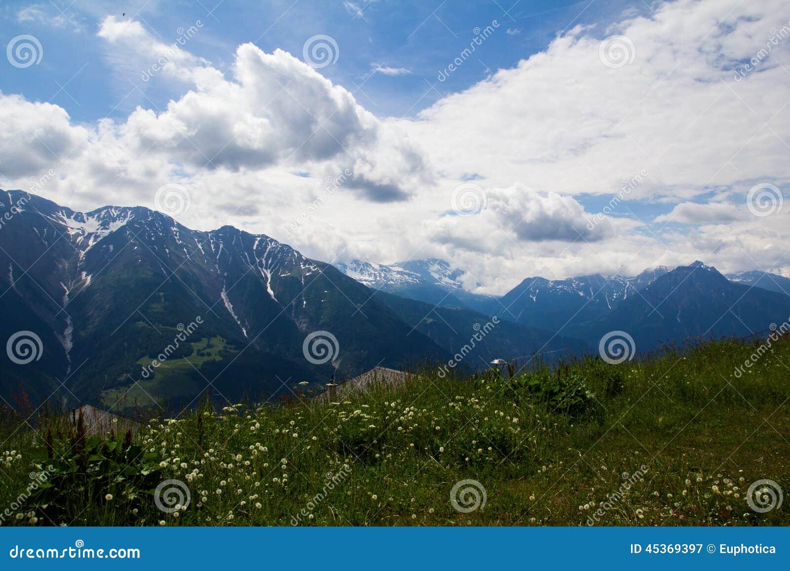 Vue d été dans les Alpes suisses