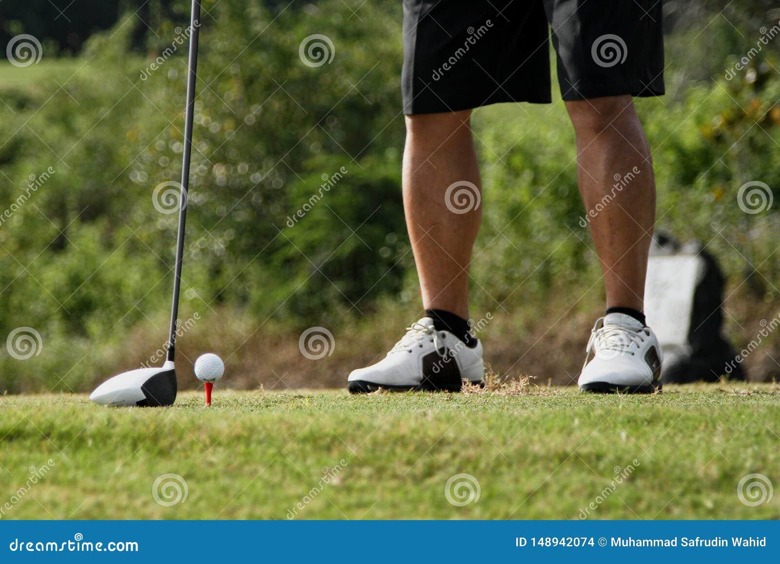 Vue d angle faible de golfeur sur le putting green environ pour prendre le tir