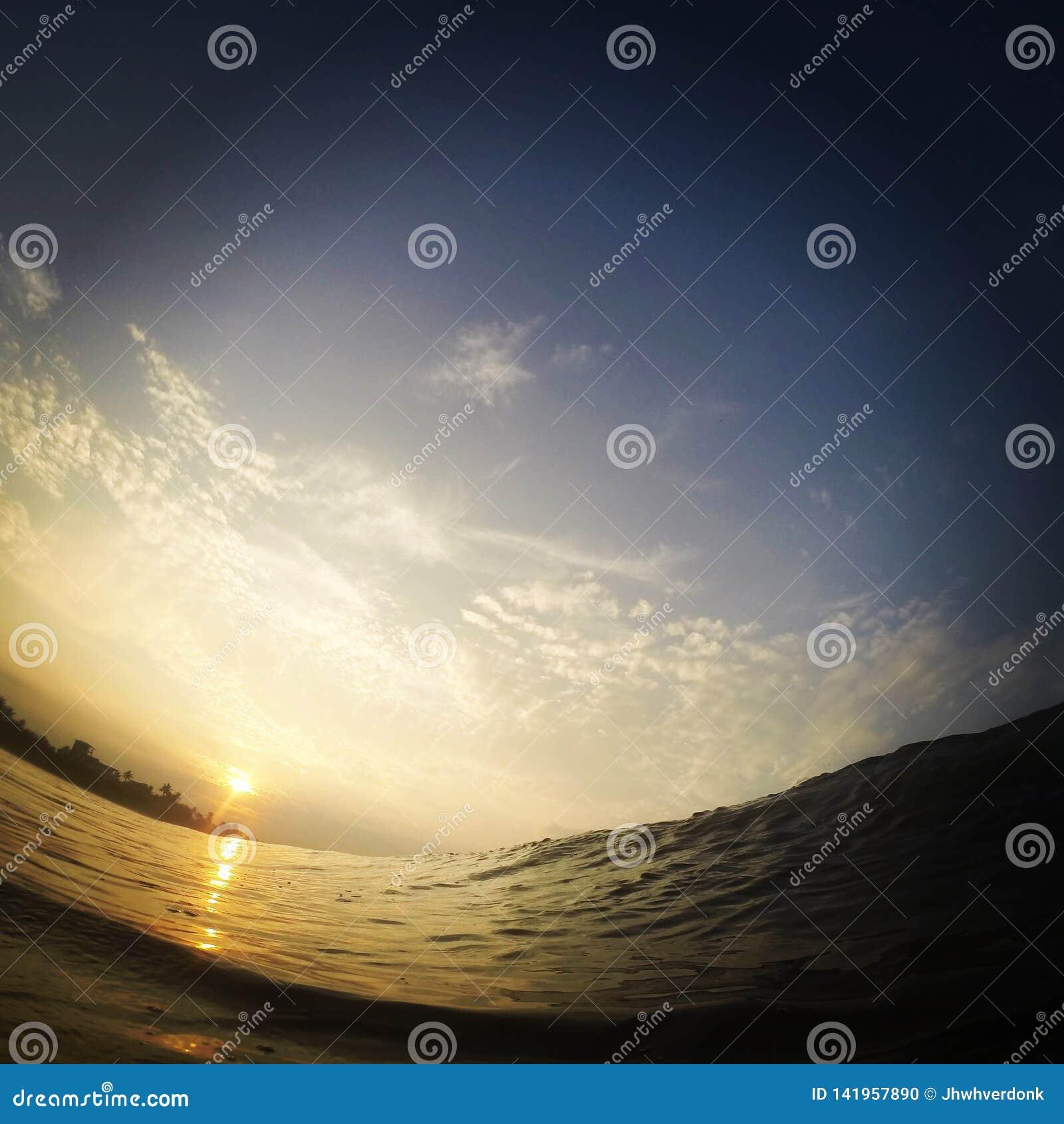 Vue d un surfer tout en entrant dans une vague